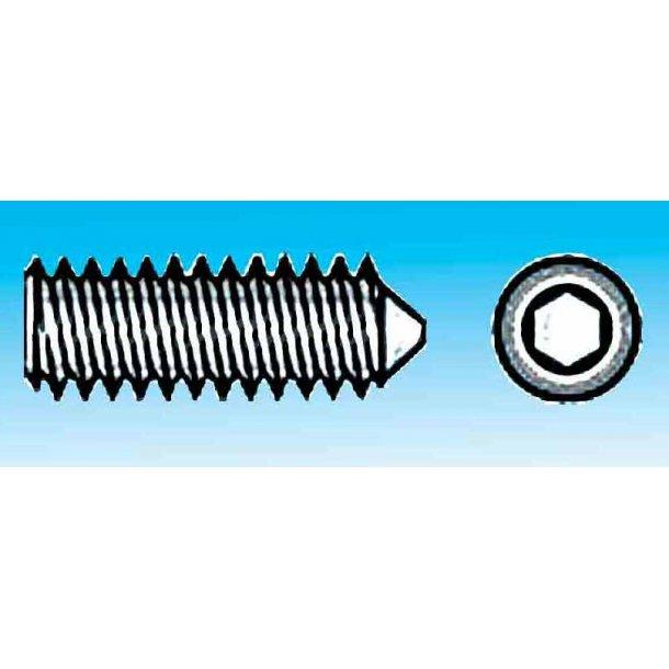 Pinolskrue m/SPIDS A4 M6x10 6/stk