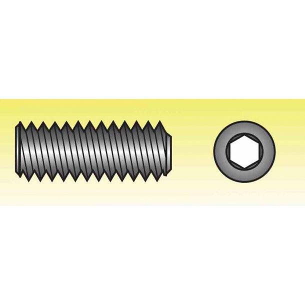 Pinolskrue m/FLAD SPIDS A4 M5x16 6/stk