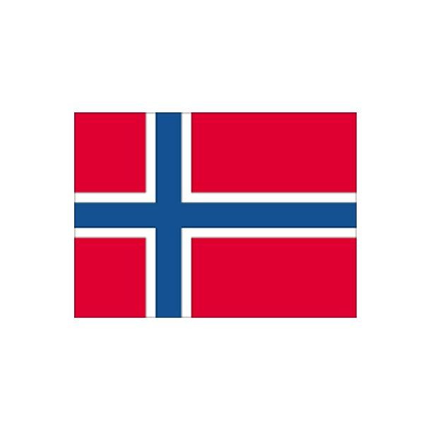 Gæsteflag Norge trykt 30x45cm