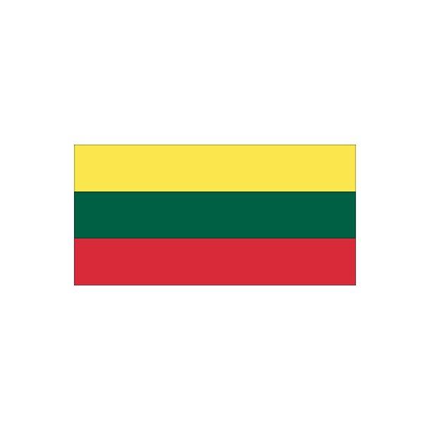 Gæsteflag Litaun trykt 30x45cm