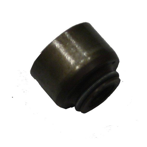 Solé Diesel Seal ventilstang